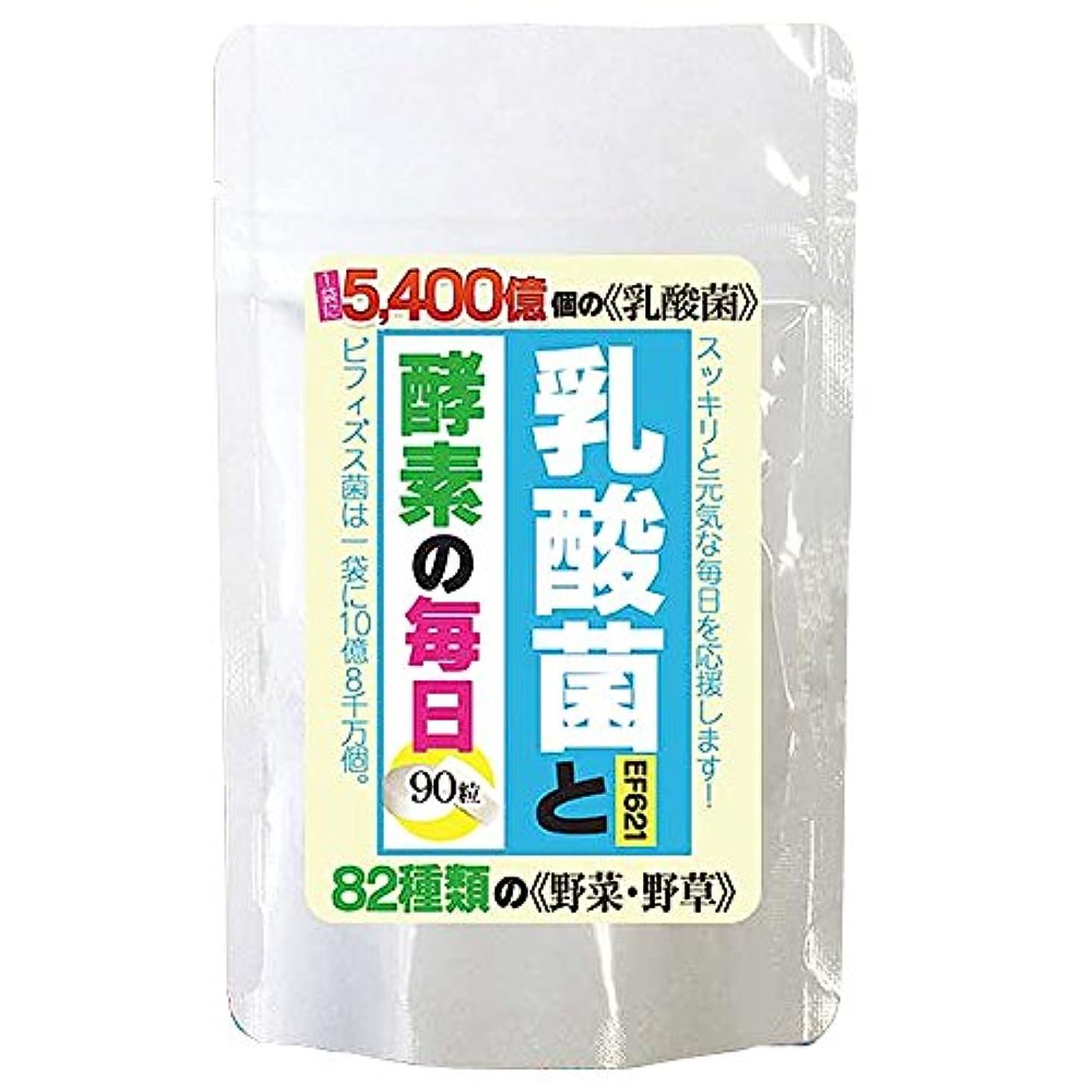 マンモス代数風味北日本科学 乳酸菌と酵素の毎日 300mg×90粒