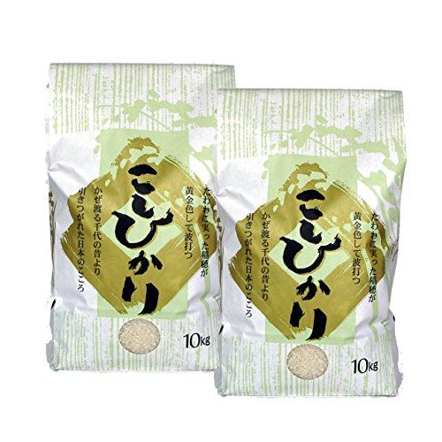【新米・白米】新潟米コシヒカリ 20kg(10kg×2袋) 平成29年産[新潟産こしひかり]【精米】