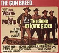 The Sons of Katie Elder映画ポスター11x 17インチ–28cm x 44cm (1965) スタイルD–(ジョン・ウェイン) (ディーン・マーティン) (Earl Holliman) (マイケル・アンダーソンJr。)(マーサ・ハイヤー) (ジョージ・ケネディ)