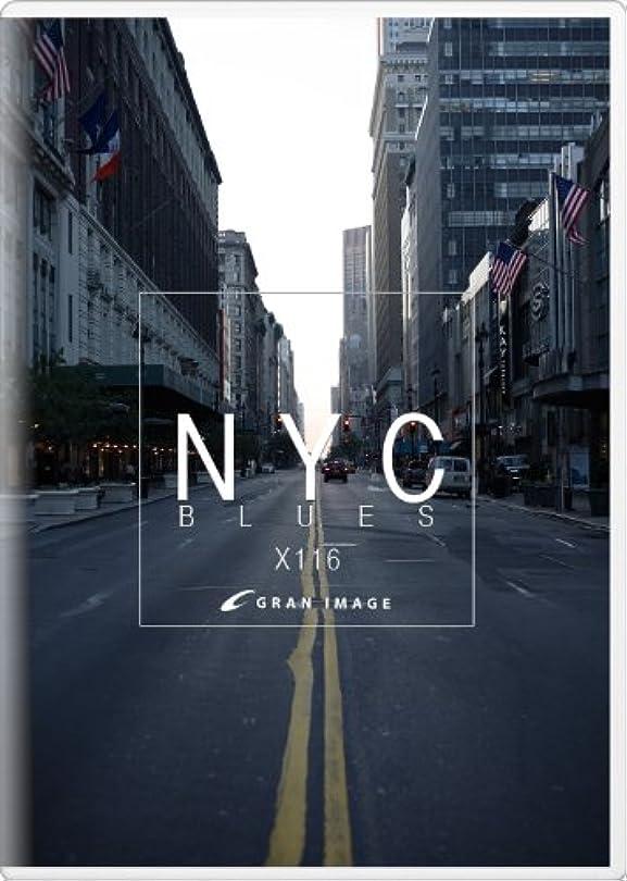 原点ジャンク獣グランイメージ X116 ニューヨークシティブルース(ロイヤリティフリー写真素材集)
