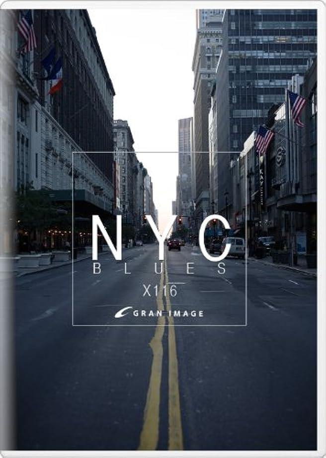 十代外向き些細グランイメージ X116 ニューヨークシティブルース(ロイヤリティフリー写真素材集)