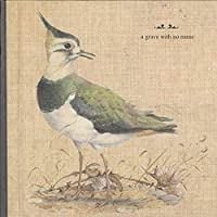 Feathers Wet, Under the Moon [12 inch Analog]
