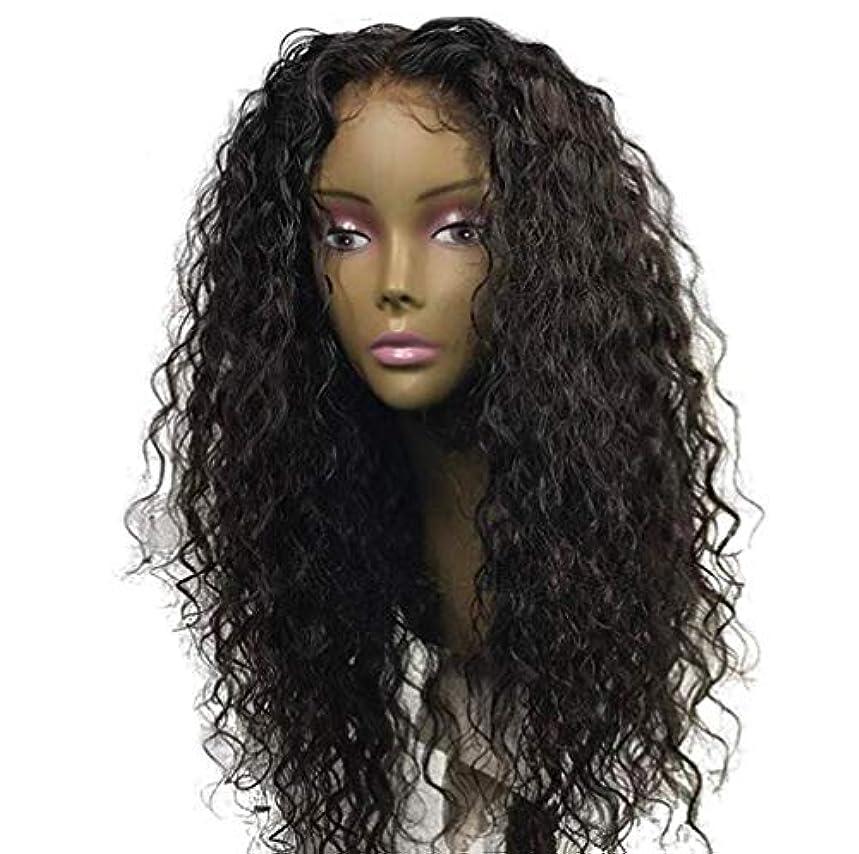 範囲一緒航空女性ブラジルレミー深い波髪かつら150%密度レースフロント人毛ウィッグベビー毛黒55センチ