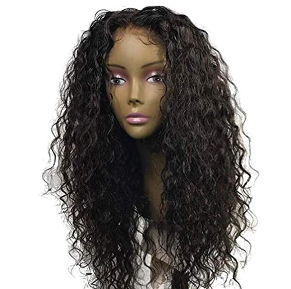 メタン消化空白女性ブラジルレミー深い波髪かつら150%密度レースフロント人毛ウィッグベビー毛黒55センチ