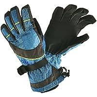 MOBUS(モーブス)防水機能付 大人用 メンズ スキーグローブ ボードグローブ 手袋□BLU GWDB-355AD ブルー