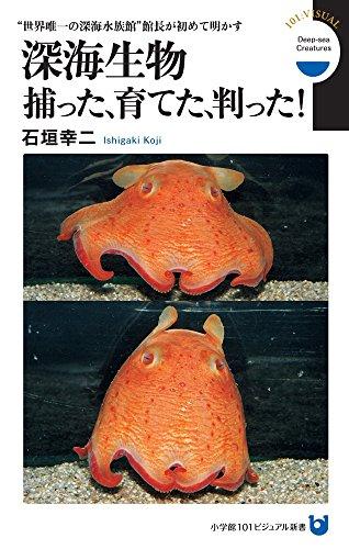 """深海生物 捕った、育てた、判った!: """"世界唯一の深海水族館"""