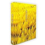 「北の国から」DVD-BOX TV+OST 全24話を収録した12枚組