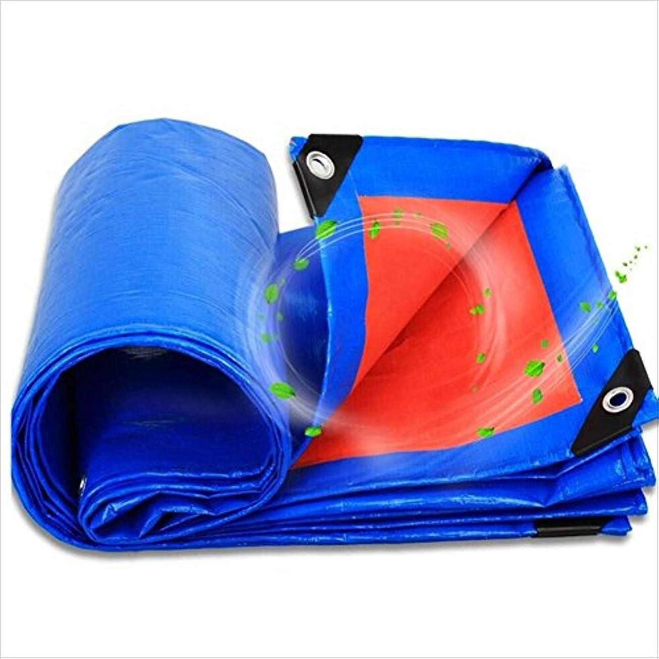石のビスケットこれまで19-yiruculture 防水布防水防水シート、屋外の防水防水日焼け止め防水シート、腐食や老化に対する木材の保護 (Color : A, サイズ : 2x3M)