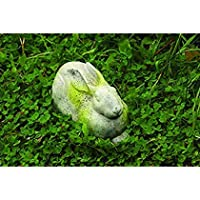 OrlandiStatuary FS8655-VER Charles Rabbit Verde Finish [並行輸入品]