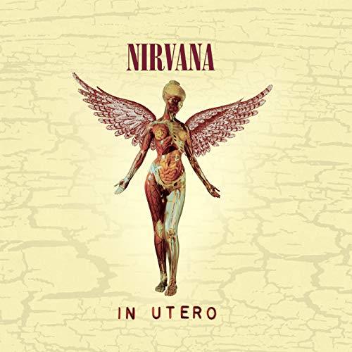 In Utero - 20th Anniversary Re...