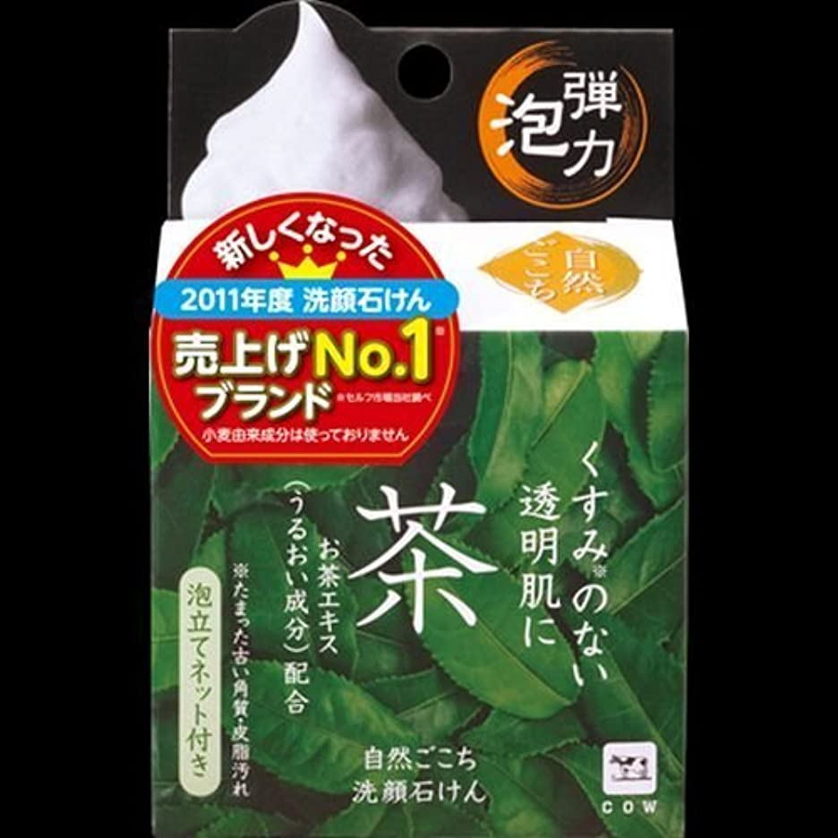 地獄調和ジム【まとめ買い】自然ごこち 茶 洗顔石けん 80g ×2セット