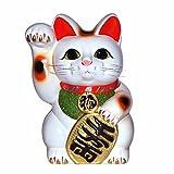 招き猫 8号 白小判猫(右手) 常滑焼