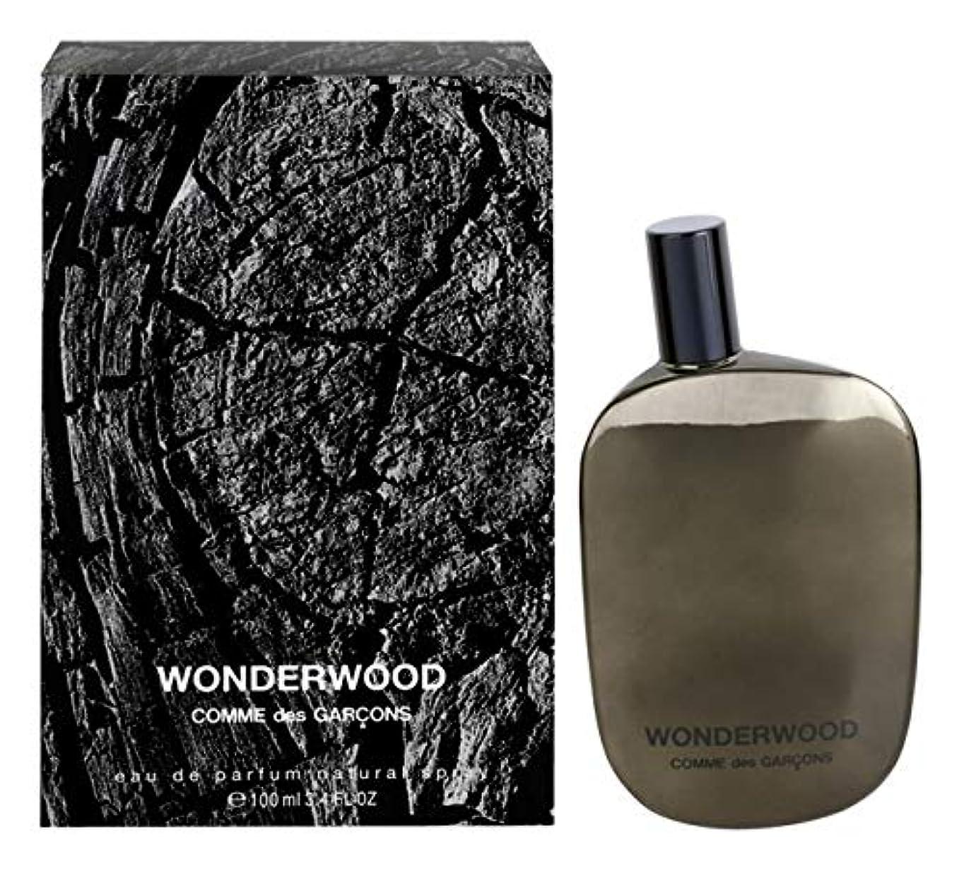 場所貢献する不愉快Comme des Garcons Wonderwood Eau de Parfum 1.7 oz./50 ml New in Box [並行輸入品]