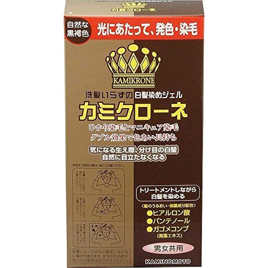 ダーリン有能な正規化加美乃素 カミクローネ ダークブラウン 80ml×6個