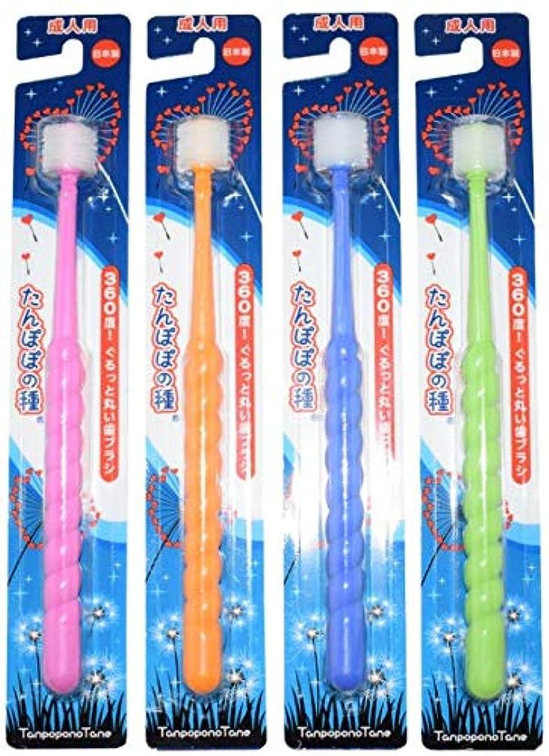 若さ連想夕暮れたんぽぽの種 360度ぐるっと丸い歯ブラシ 極細毛 (成人用 4本セット)