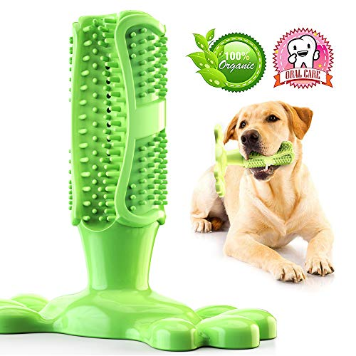 2019最新 犬用歯ブラシ ペット用歯ブラシ 歯石予防 口腔清潔 口腔ケア 犬かむ玩具 360度保護 耐久性 天然ゴム (M緑)
