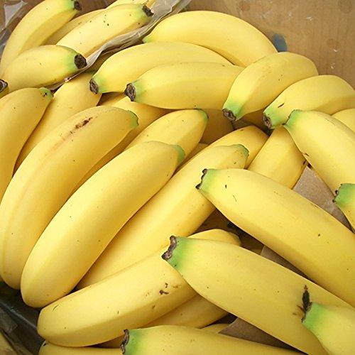 南国フルーツ フィリピン産バナナ13kg