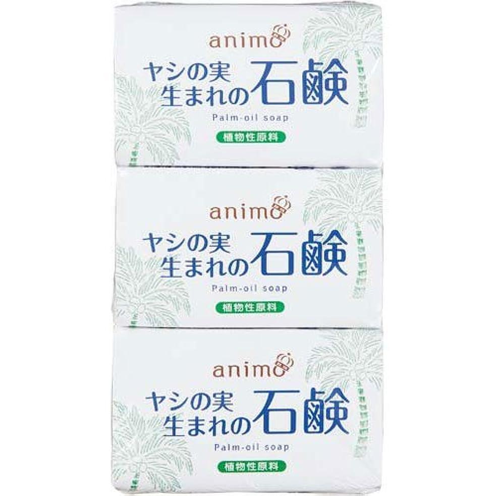 免除食堂失ロケット石鹸 ヤシの実石鹸 80g×3個×5パック
