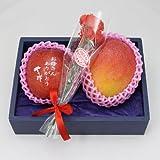 母の日 フルーツ ギフト 文字入り りんご 宮崎産 完熟 マンゴー セット シルクフラワー カーネーション 付き