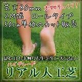 ハイグレード リアル 人工芝 ロールタイプ 芝丈30mm 2M幅 切り売り 50cm単位【最大4.5m】
