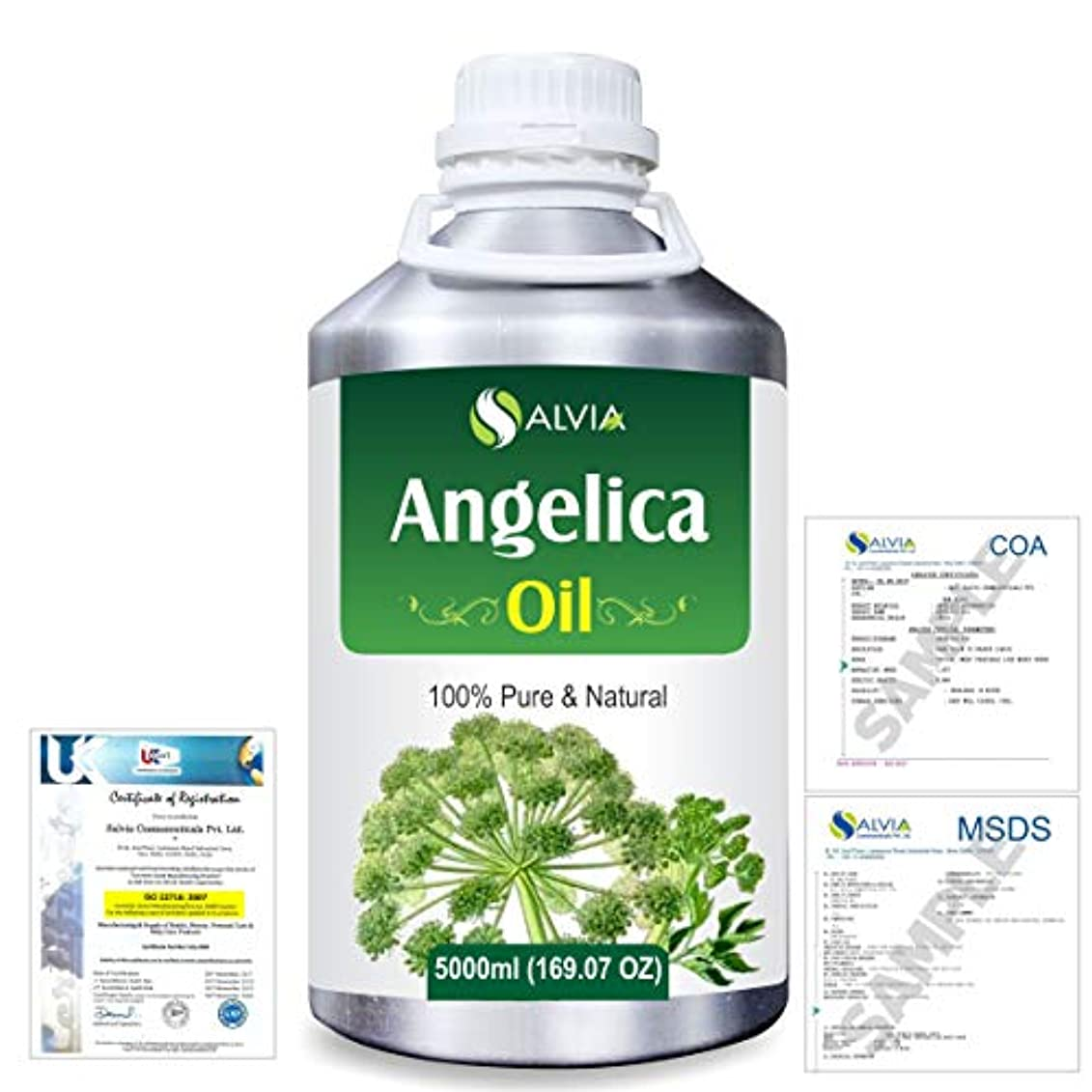 後偽装するシリアルAngelica (Angelica archangelica) 100% Natural Pure Essential Oil 5000ml/169fl.oz.
