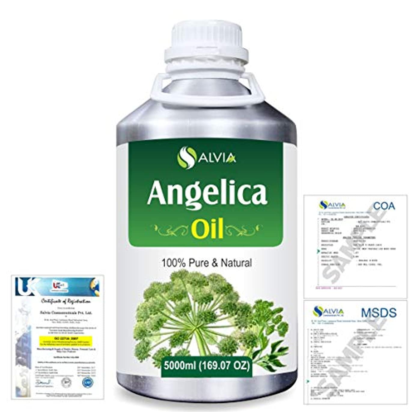 とにかく固める従来のAngelica (Angelica archangelica) 100% Natural Pure Essential Oil 5000ml/169fl.oz.