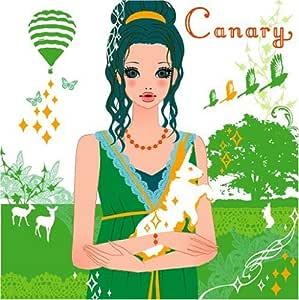 Canary - sweet holiday