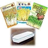 もやし(スプラウト):3種栽培セットA(ブロッコリー、ブラックマッペ、アルファルファ)[タネ][小袋][大容器] / 園芸ネット