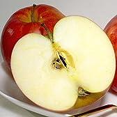 青森県 藤崎町 マル組りんご園のジョナゴールド  10kg  大玉28~32個入り