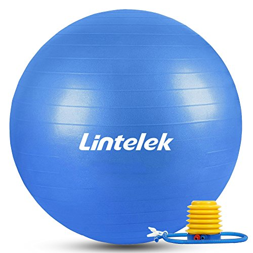 Lintelek バランスボール ヨガボール フィットネスボール 65cm 滑り止め チューブ付 アンチバースト 運動 椅子 ジム/ホーム/オフィスなどに適用 高品質日本語説明付け (ブルー)