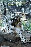 オールドレンズで撮る動物園 多摩動物公園2014秋
