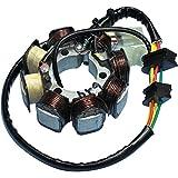 Rick's Motorsport Electrics ステーター コイル アッシー 97年-04年 ホンダ TRX250 Recon 21-624 862363