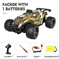 Rabugoo おもちゃとゲーム リモコンカーX電源s-008 Yellow single battery package 1:16