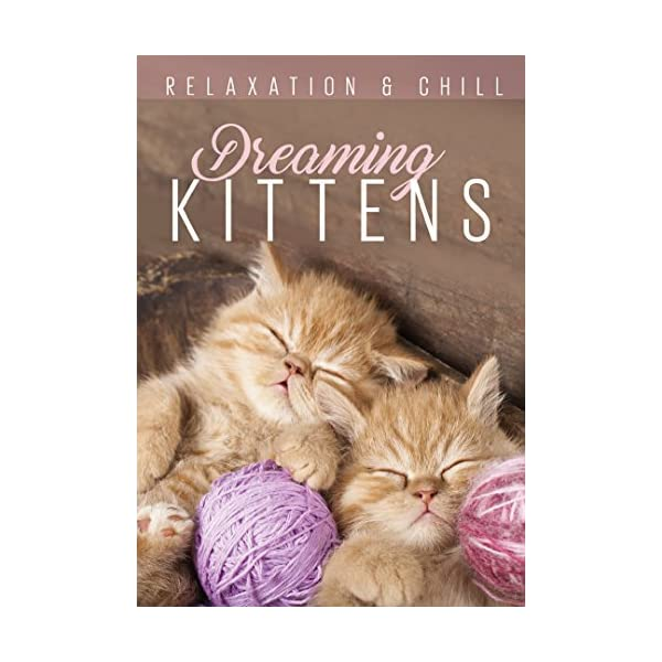 Relax: Dreaming Kittens ...の商品画像