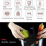 L.tsn家庭用フルーツ野菜ジュース抽出器ブレンダー、2ポート起動+静かな酸化防止+食品グレードの材料+低速押出+ 180 W、清掃が簡単, Red 画像