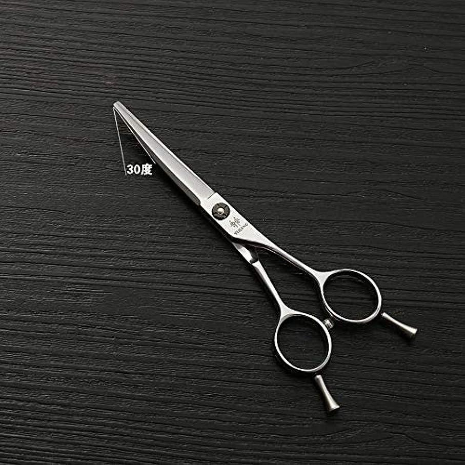 シーズン祖母いつでも理髪用はさみ 5.5インチ美容院プロフェッショナルバリカンハイグレードシルバー美容ツール440 cステンレス鋼バリカンヘアカット鋏ステンレス理髪はさみ (色 : Silver)