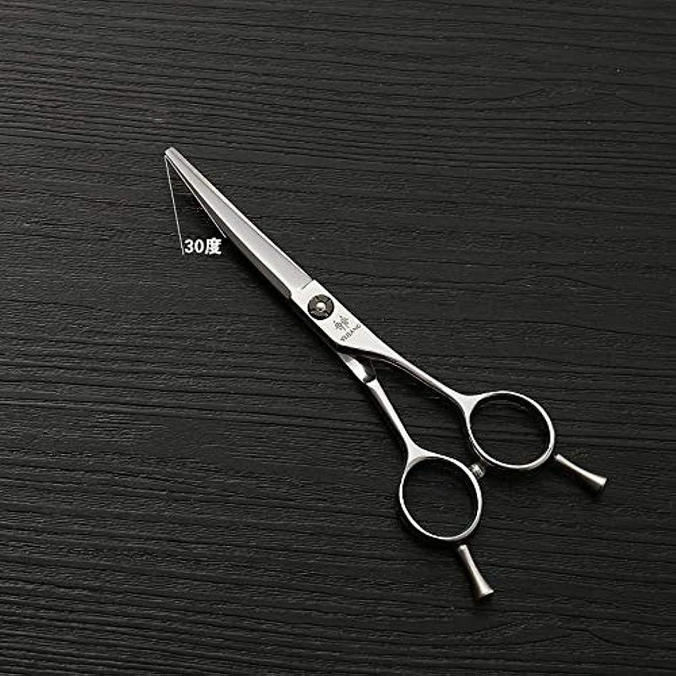 政府特別な求める440Cステンレス鋼バリカン、5.5インチ美容院プロのバリカンハイグレードシルバー理髪ツール ヘアケア (色 : Silver)