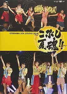 OTODAMA SEA STUDIO 2018 ~こぶし夏魂! ! ~ [DVD]