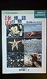 渚の博物誌 漂着物のものがたり (ブックレットかながわ(5))