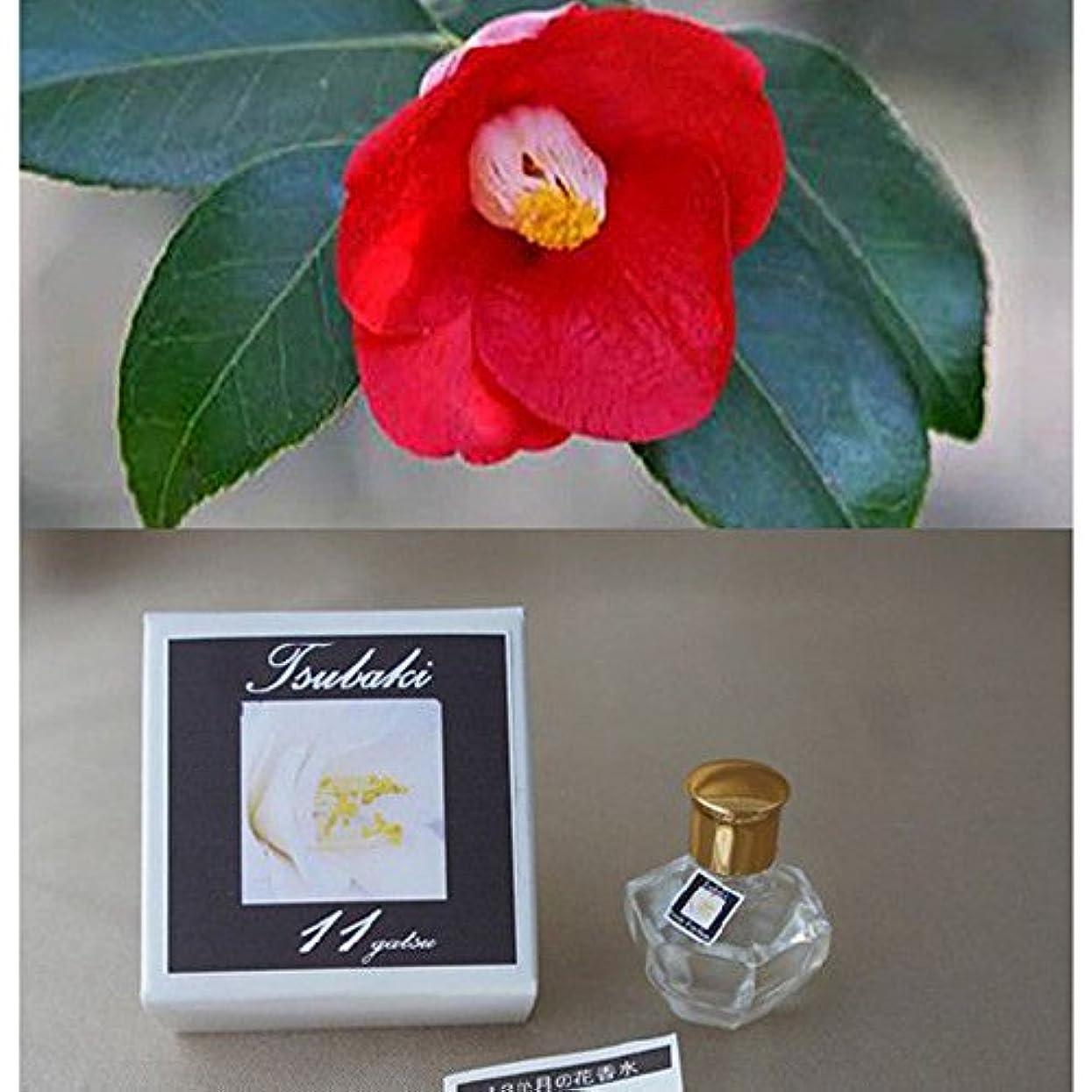 名誉男やもめ黙香運おみくじ&相性図鑑付き「12か月の花香水」 東山植物園の自然の花の香りから生まれた香水です。 (11月 ツバキ)