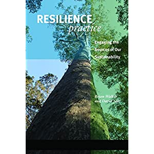 Resilience Practice: Building Capacity to Absorb Disturbance and Maintain Function