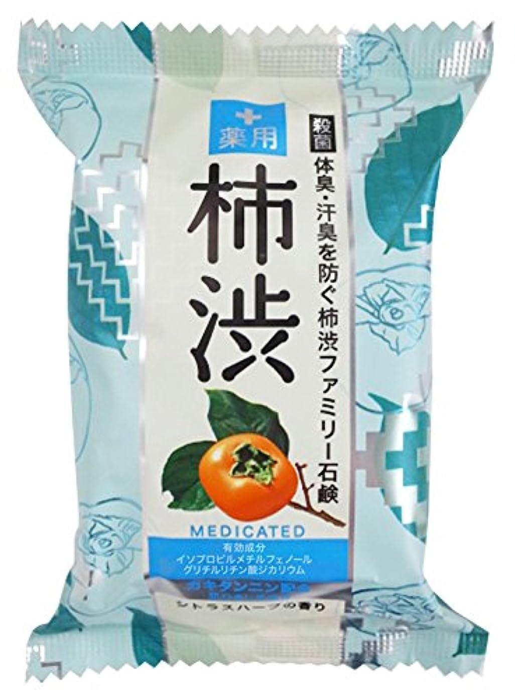 暴露する医薬品ベースペリカン石鹸 薬用ファミリー柿渋石鹸