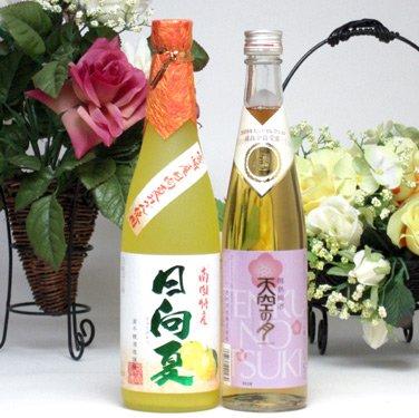 夏みかんと梅のお酒セット 宮崎産日向夏みかん使用 日向夏 500ml×2本