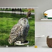 シャワーカーテン フクロウの鳥 防水 防カビ加工 カーテン 特別なデザイン バスルーム 間仕切りにも バスルーム プラスチックフック付属 お風呂 洗面所 間仕切り 洗濯可能