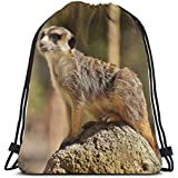 "Curious Furry Animal Meerkat Print Drawstring Backpack Rucksack Shoulder Bags Gym Bag for Adult Child 16.9""x14"""