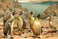 Buyenlarge 'ペンギン「紙ポスター、20by 30インチ