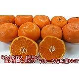 産地直送 みかん 訳あり ご家庭用 熊本産 1箱 箱込10キロ(9kg+保証分500g)フルーツ 果物