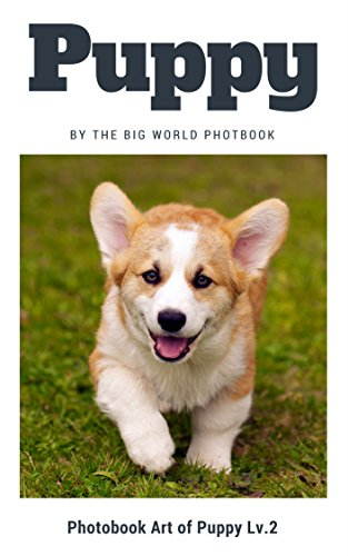 Puppy by The Big World Photobook : Photo book dog, Dog photography,The Dog,My Dog,Cats,Dog,Cat Dog,Black Cat,White Kitten,Black Kitten,Kittens,Kitten Feed,Puppy,Kitten ... (Photobook Art of Puppy 2) (English Edition)