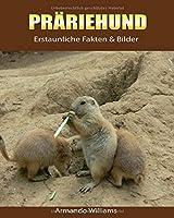 Praeriehund: Erstaunliche Fakten & Bilder