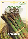 【HORTUS社種子】【Art.0201】アスパラガス・アルジャントゥイユ